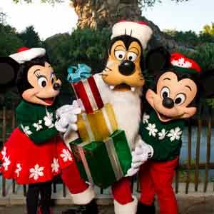 Merry Christmas from Military Disney Tips. Image (C) Disney
