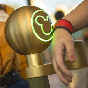 Disney World's Magic Bands © Disney