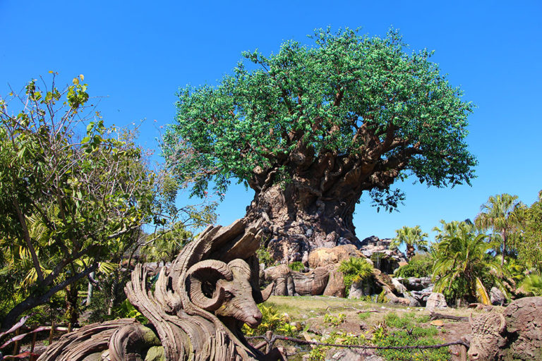 Disney Animal Kingdom Military Discounts