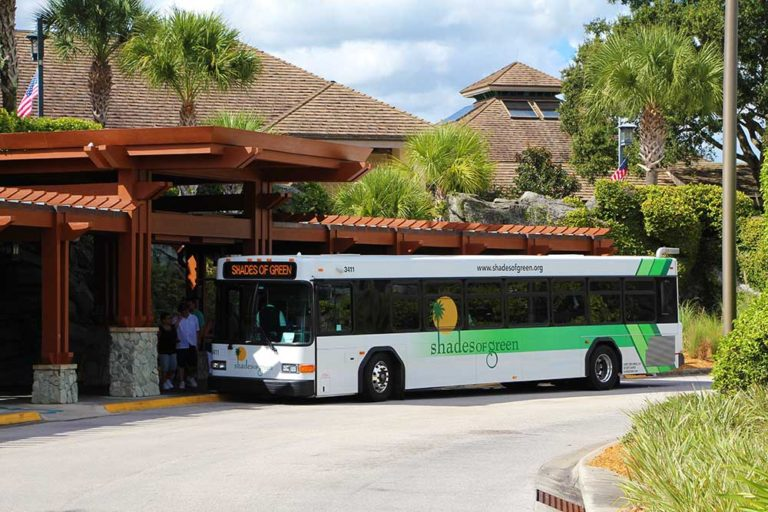 SHades of Green Buses Dual ID Check