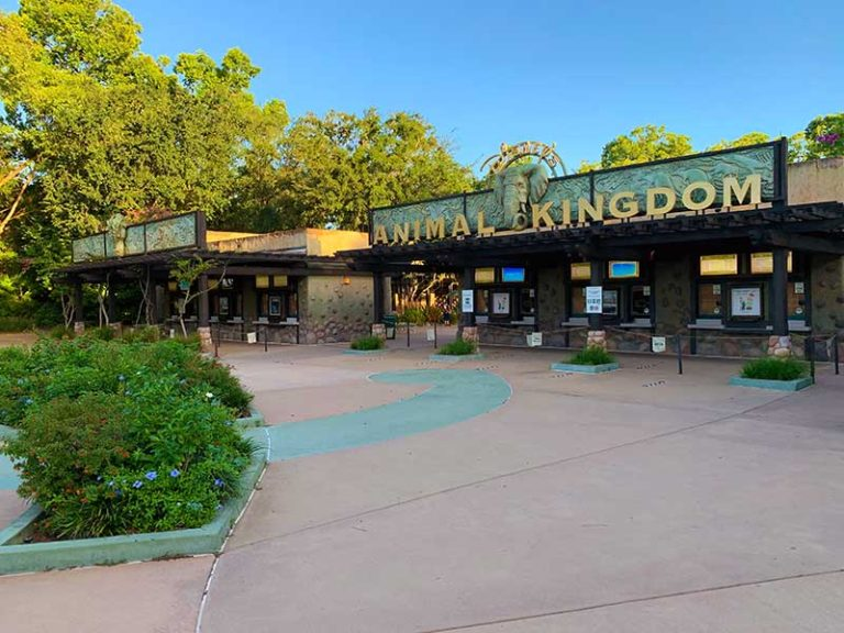 Park Hopping Returns to Walt Disney World!