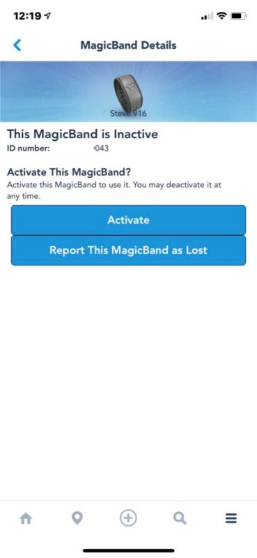 What If I Lose My Magic Band